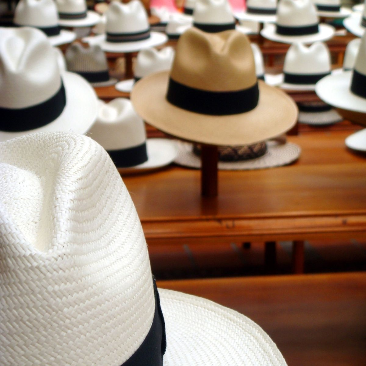 Panama Traditional Hat Shopping