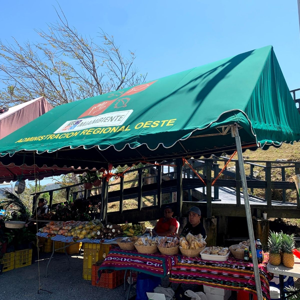 Local Fruits and Vegetables in Chica Panama